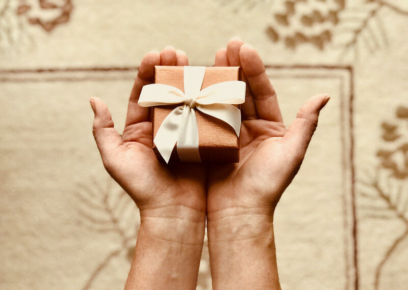 The Ultimate Gift Guide for the Vegan in Your Life