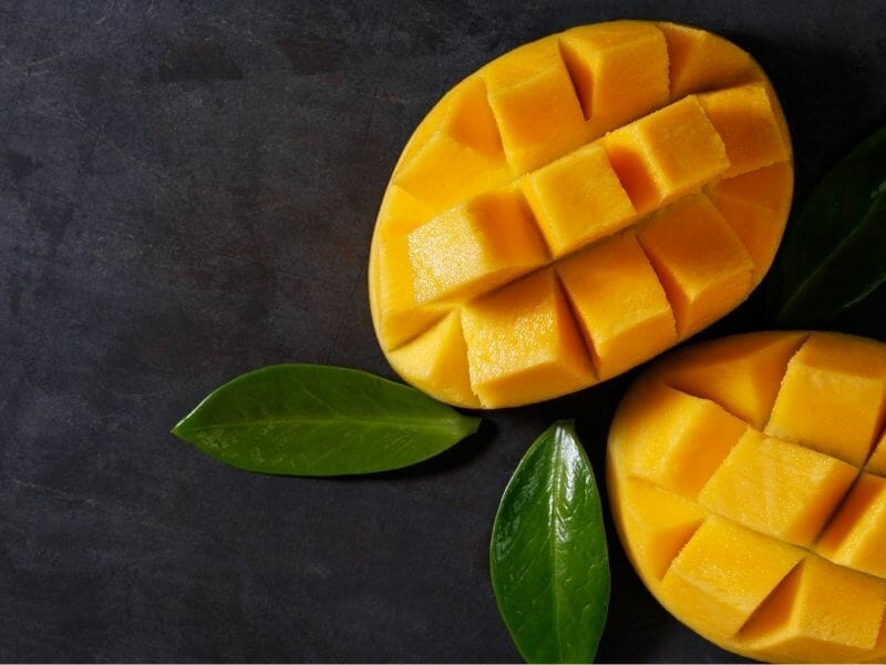 Can Cats Eat Mangoes?