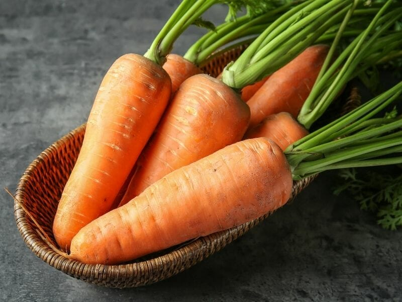Can Cats Eat Carrots?