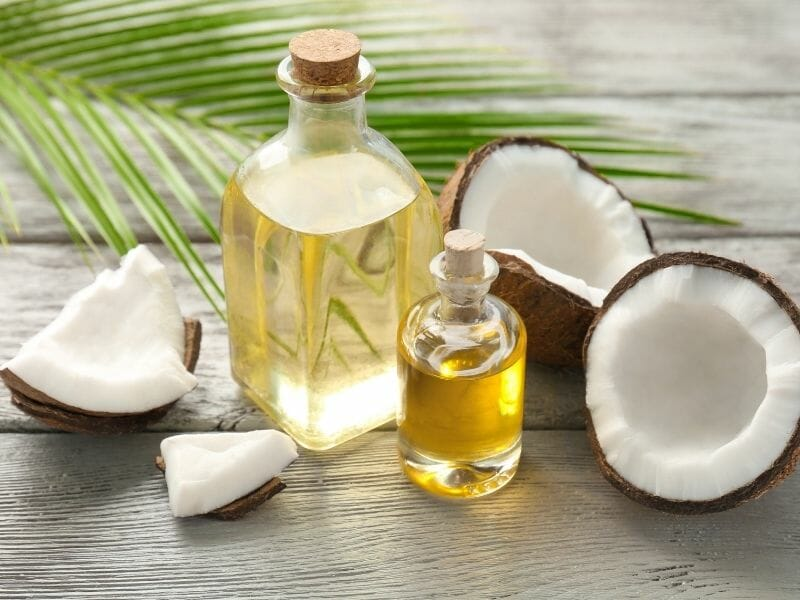 Can Dogs Eat Coconut Oil?