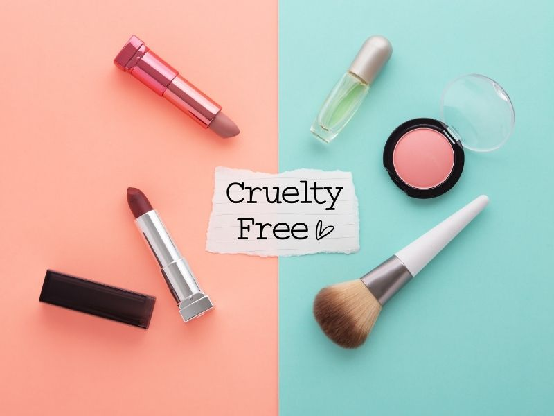 Which Makeup Brands Are Cruelty Free? [We reviewed over 20 brands!]
