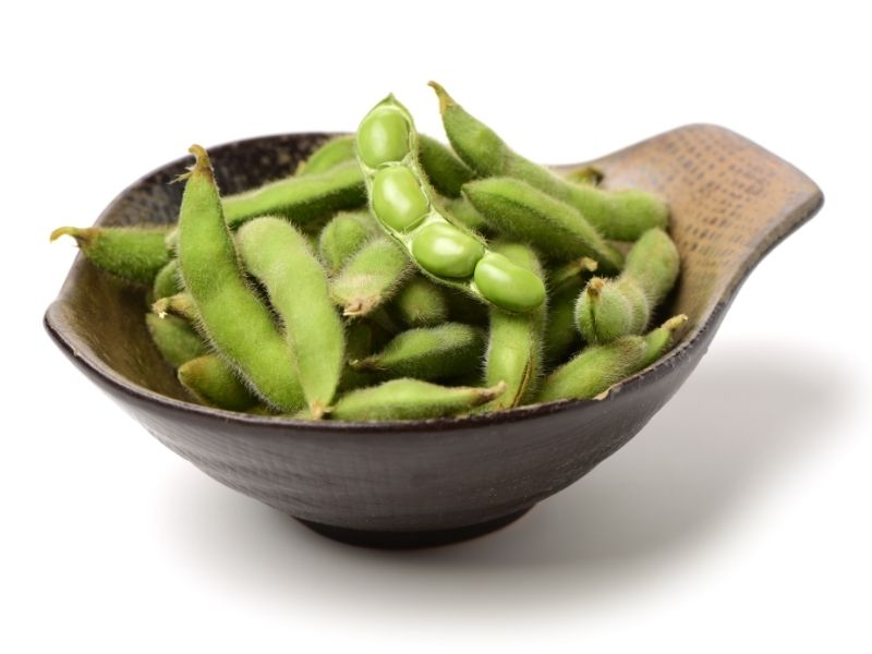 Can Cats Eat Edamame?